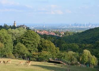 Nachhaltiges Tagen in Hessen