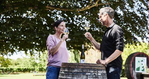 Digitales Fingerfood: Sommer-Seminarreihe für die hessische Gastronomie